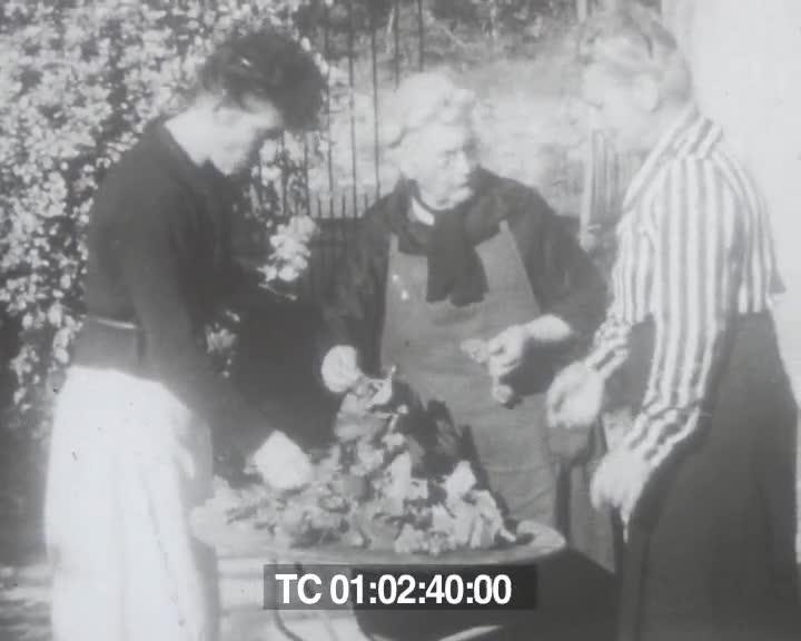 Cueillette du raisin blanc | Marie Jacob